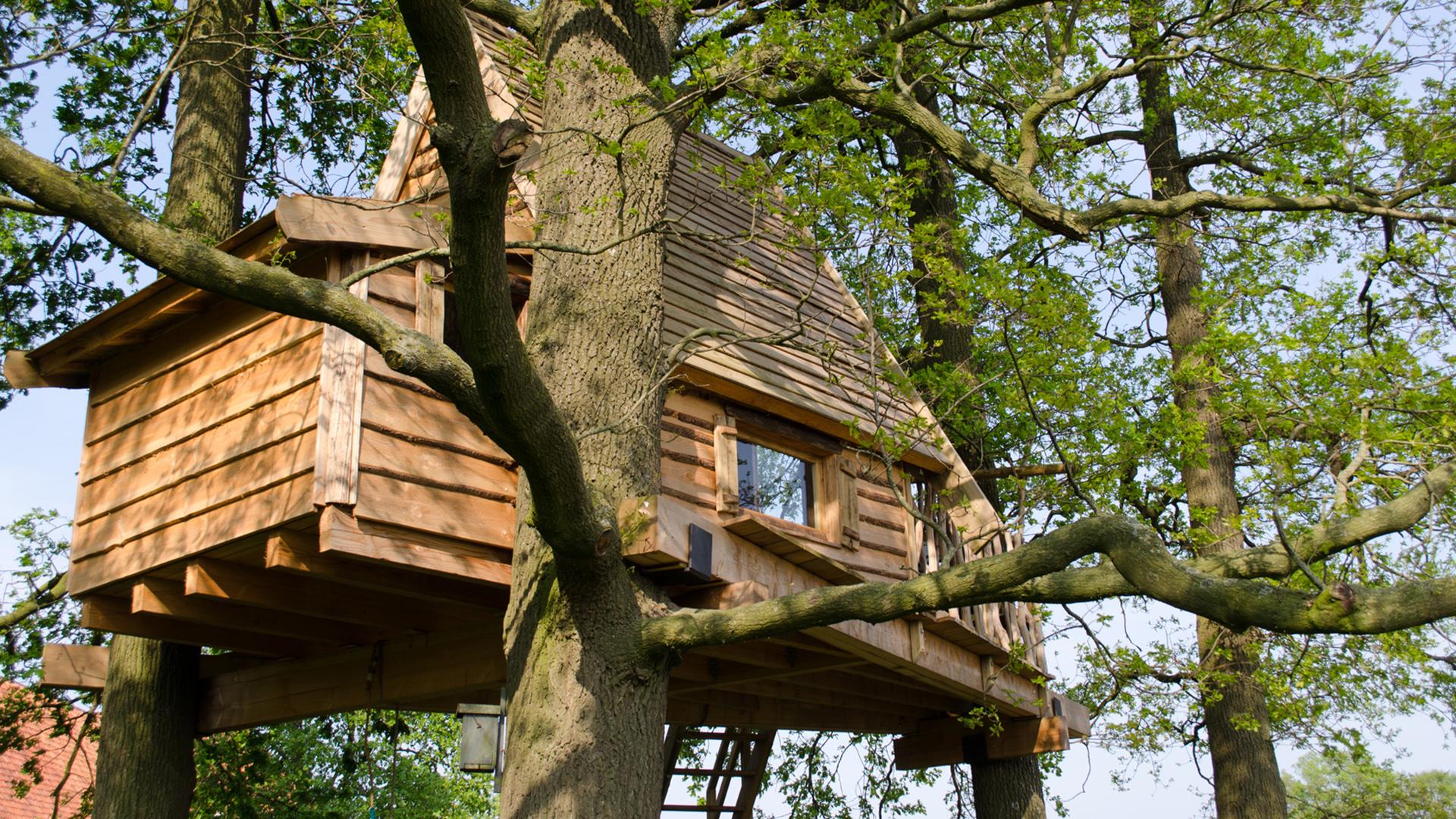 cabane dans les arbres constructeur artconcept bois. Black Bedroom Furniture Sets. Home Design Ideas